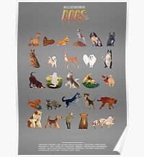 Dogs from A - Z Poster