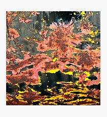 Bubbling Cauldron Abstract Be Square Photographic Print