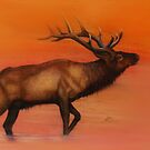 Magestic Elk by Ria Spencer