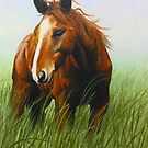 Horse in the Wind by Ria Spencer