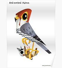 Red-necked Falcon caricature Poster