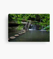 Water Pathway Canvas Print