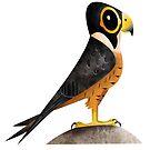 Shaheen Falcon caricature by rohanchak