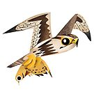 Saker Falcon caricature by rohanchak