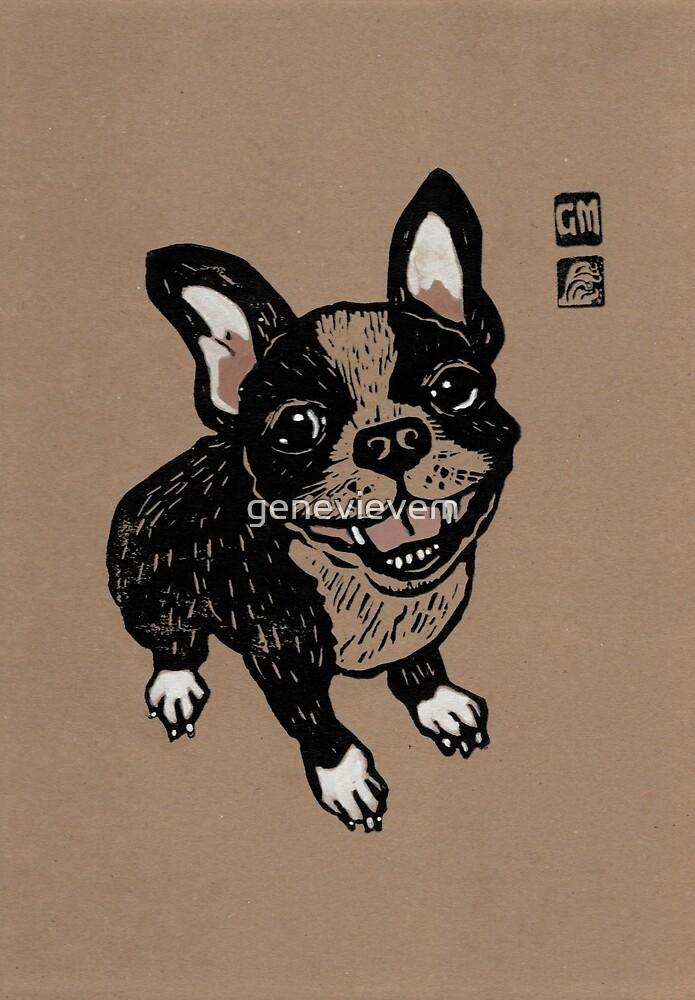 French Bulldog by genevievem