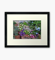 Colorful flowers in flower pots Framed Print