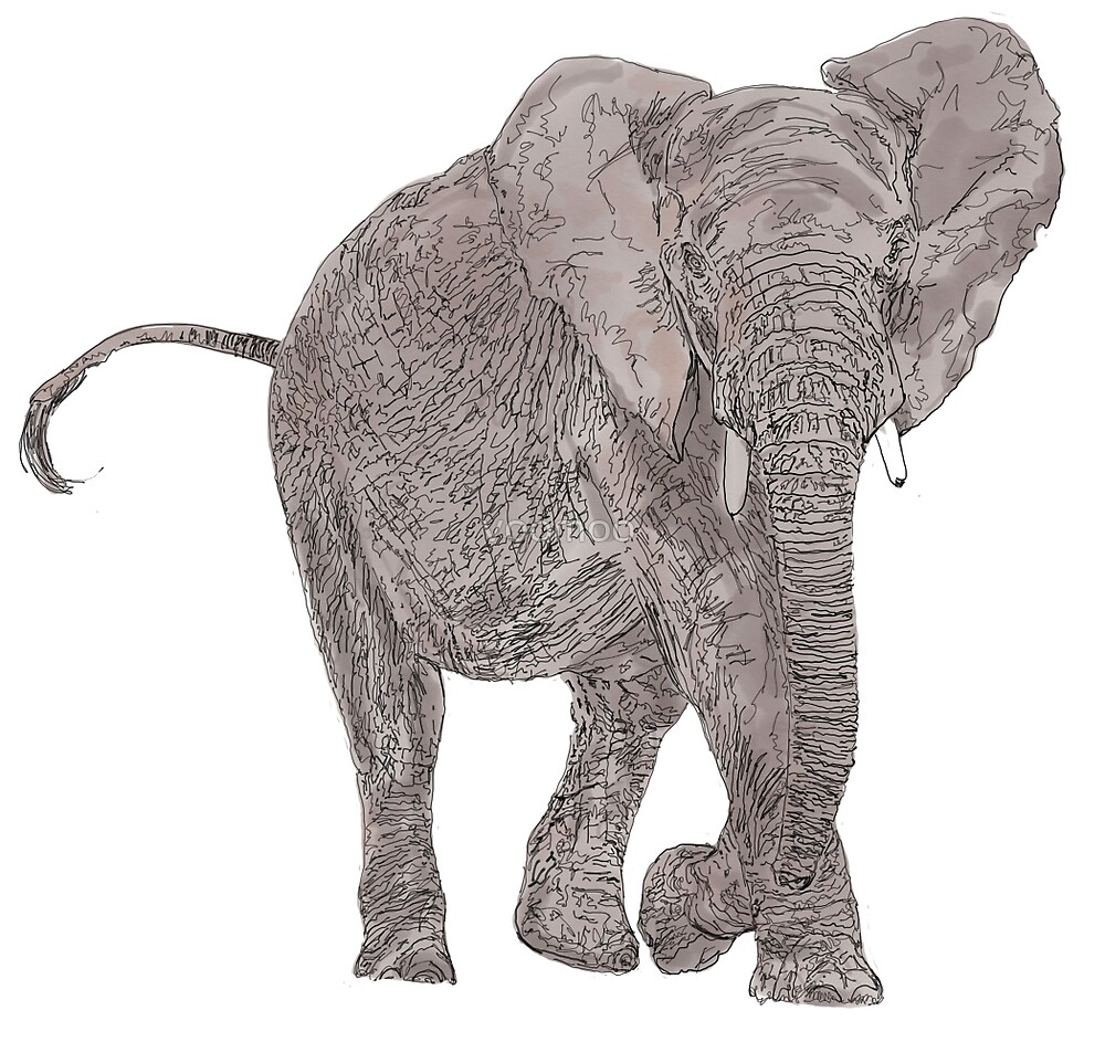 African Elephant  by voomoo