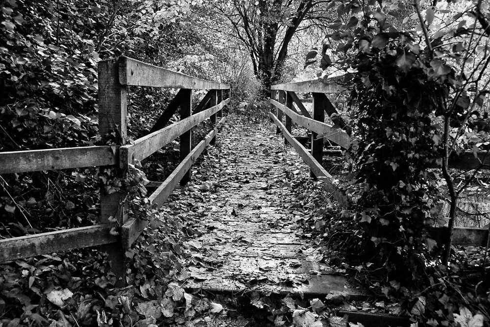 The Wooden Bridge #2 by Ellesscee