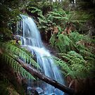 Waterfall at Mount Buangor State Park by Anthony Carrick