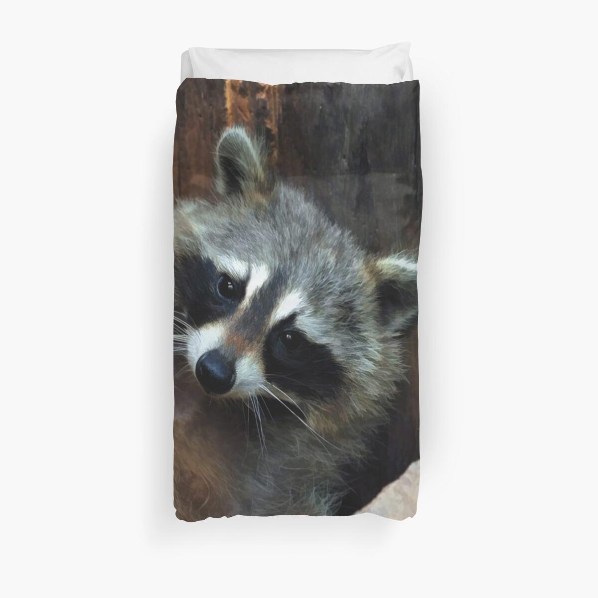 Raccoon Reclining  by Skye Ryan-Evans