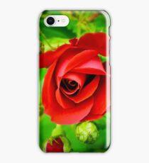 A Single Red Rose iPhone Case/Skin
