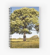 Sunny Day onthe Common Plot Spiral Notebook