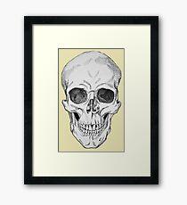 Frontal Skull Anatomical Drawing Framed Print
