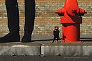 Alike? by Roberta Angiolani