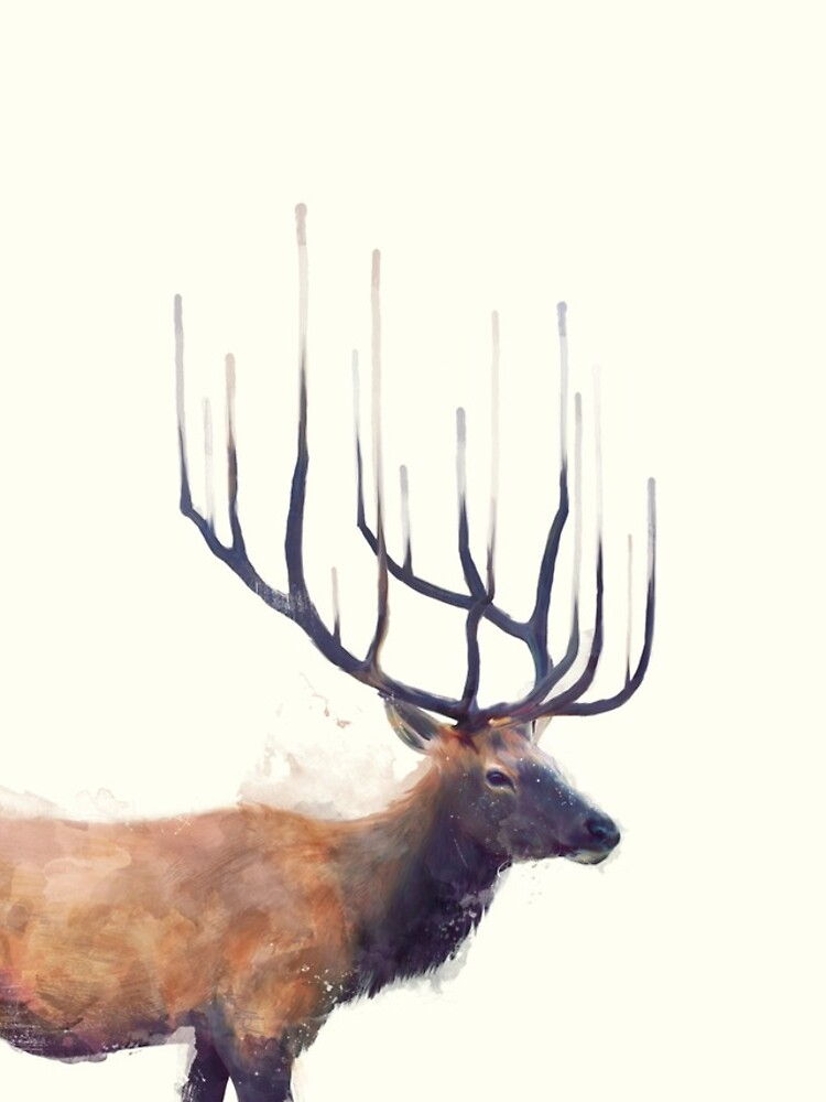 Elk // Reflect by AmyHamilton
