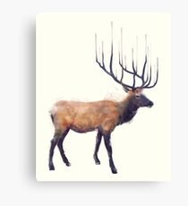 Elk // Reflect Canvas Print