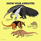 Know Your Anteaters by PepomintNarwhal