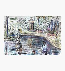Young Boy at the Duck Pond Photographic Print