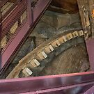 Gears inside the Windmill by Imagery