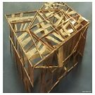 Cage07 by Anders Lidholm