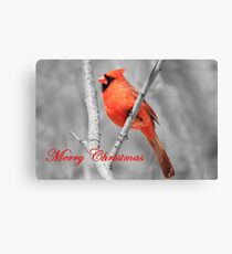 Red Cardinal Christmas Canvas Print