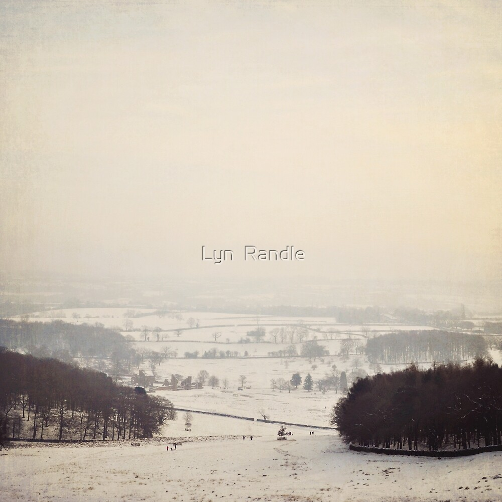 Snow covers the land by Lyn  Randle