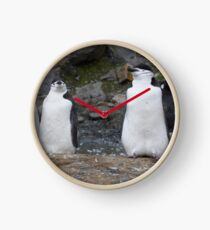 Chinstrap Penguins ~ Aerobics Workout Clock
