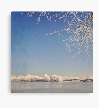 Winter wonderland with snowflakes Canvas Print