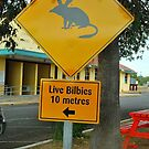 Bilbies About :) by Penny Smith