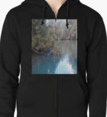 Homosassa Springs Manatee Pond T-Shirt