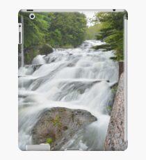 Dragon Fall iPad Case/Skin