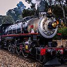 218 steam engine by Delightfuldave