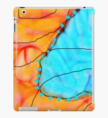 Cold Front  iPad Case/Skin