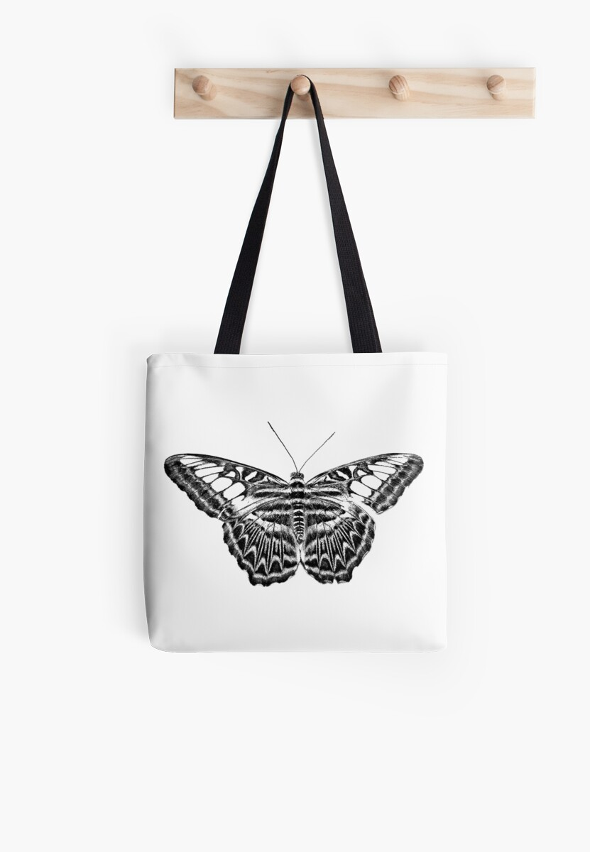 butterfly engraving butterfly prints butterfly drawings