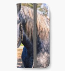 Equine Greeting iPhone Wallet/Case/Skin