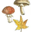 «Autumn Folie» de laramaktub