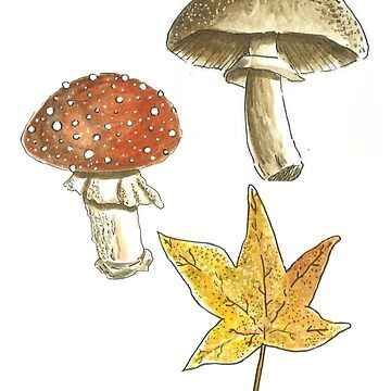 Autumn Folie de laramaktub