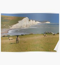 Sheep and the Seven Sisters - HDR Poster