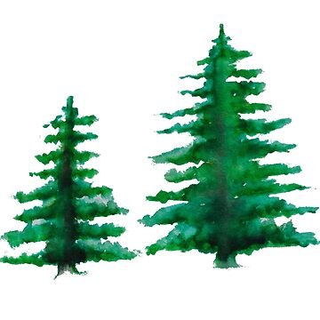 2 Pine Trees by hlynn89