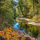September Trail by vivsworld