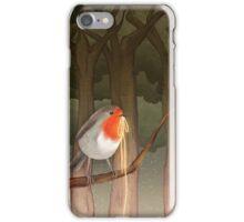 Robin iPhone Case/Skin