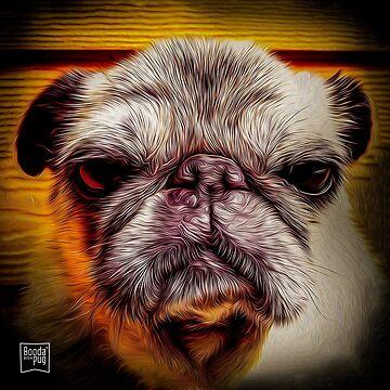Grumpy Pug von boodapug