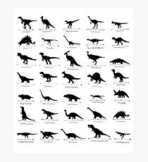 Whats Your Favourite Dinosaur? Photographic Print