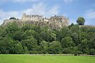Stirling Castle 88 by David Rankin