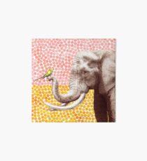 New Friends - Elephant & Bird Art Board Print