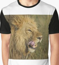 Lion Licking Graphic T-Shirt