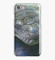 Amethystine Python iPhone Case/Skin