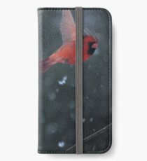 A Winter's Moment iPhone Wallet/Case/Skin