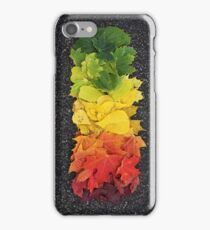 Fall Leaves iPhone Case/Skin