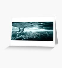 Dolphin Reef Greeting Card